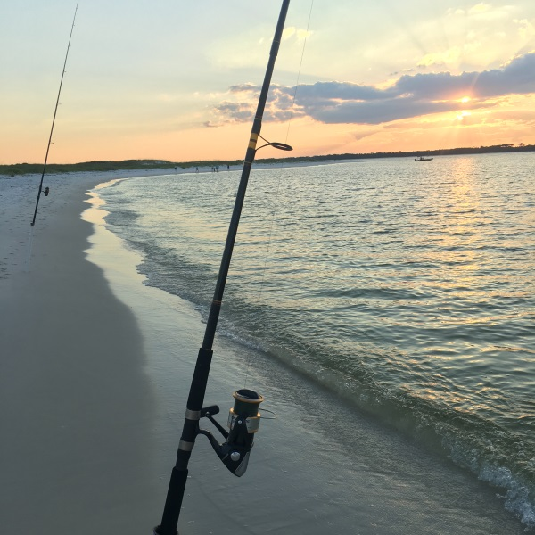 Top 9 Criteria to Evaluate When Choosing a Surf Rod - The